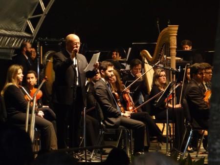 Orquestra sinfonica (15)